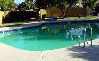 Murky pool.jpg