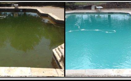 Ask the Pool Guy - Green Pool