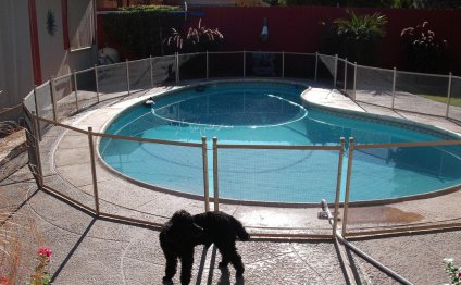 Removable Pool Safety Fences