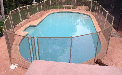 Pool Guard Fence