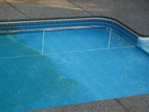 swimming pool issues, issue with my pool, pool spots, swimming pool algae, algae children's pool