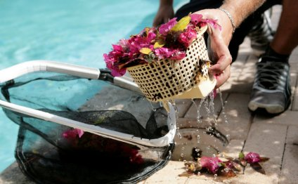 Swimming Pool Maintenance Pool Care Solutions