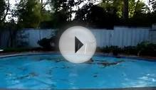 Copper Pool Frisbee