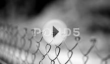 Fencing Wire Mesh. Stock Video 801478 | HD Stock Footage